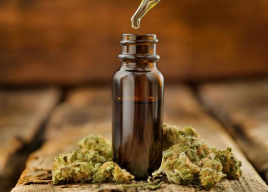 Cannabis Sativa (cânepa indiană)