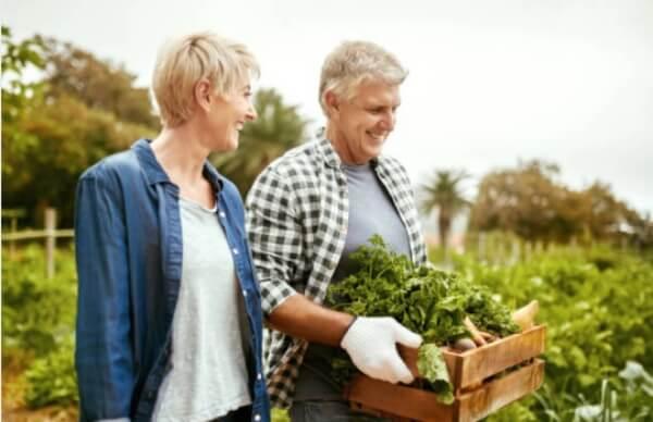 Ierburi pentru fericire sexuală, potență și fertilitate