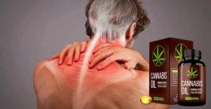 Cannabis Oil Capsule – Bio-Soluție pentru articulații detașabile și active